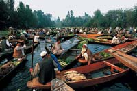 Dal Lake, India  click to enlarge  file size