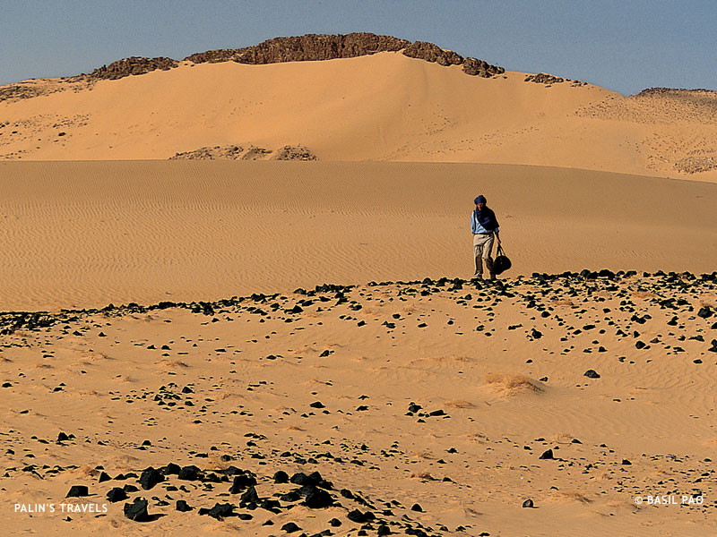 desertification in niger Niger, one of the world's poorest countries in niger, formerly forested lands are plagued with soil loss and desertification the sahara desert.
