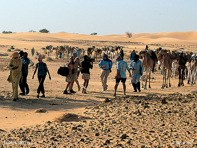 desertification in niger